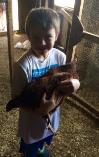 Hen Holding