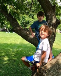 Two in a Tree