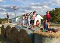 Farm Tour Fun